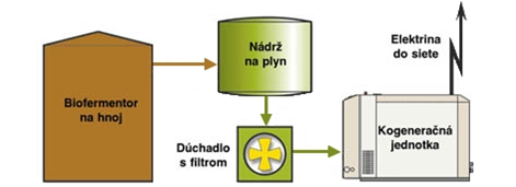 bioplyn